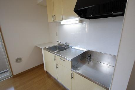 シンク横には洗った食器を置けちゃいます!調味料なども置けますね。