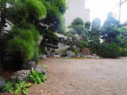 柳川町の庭園で楽しく暮らすのは。。。
