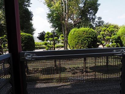 南面バルコニー~窓からはグリーンも見えて癒されます♪