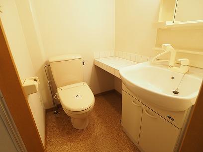 カウンタータイプの洗髪洗面化粧台&トイレ
