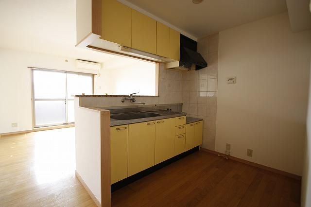 システムキッチン~リビングの様子を見ながらお料理出来ます