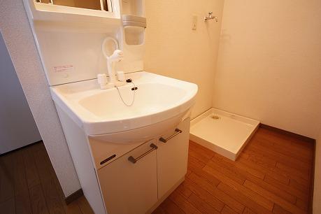 洗面所にシャンプードレッサーあります