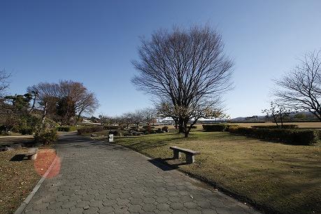 烏川緑地運動公園
